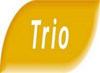 Pour faire un trio, sélectionnez 3 chevaux sur PMU.