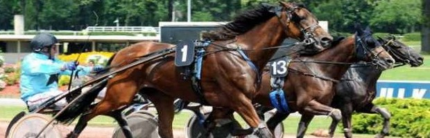 Participez au grand national du trot avec PMU