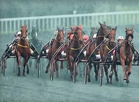 Misez sur le Prix de Belgique Opodo Race